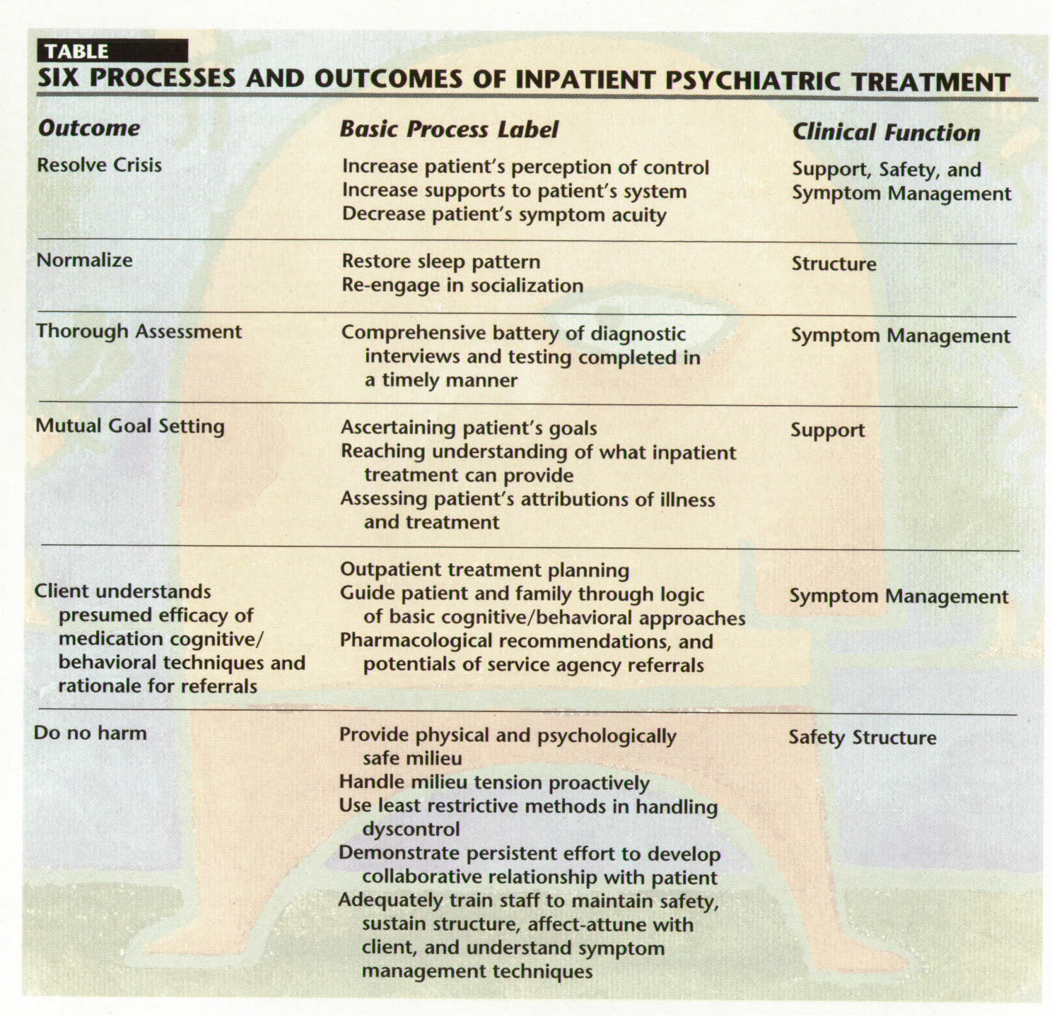 Psychiatric Hospitalization And Process Description What