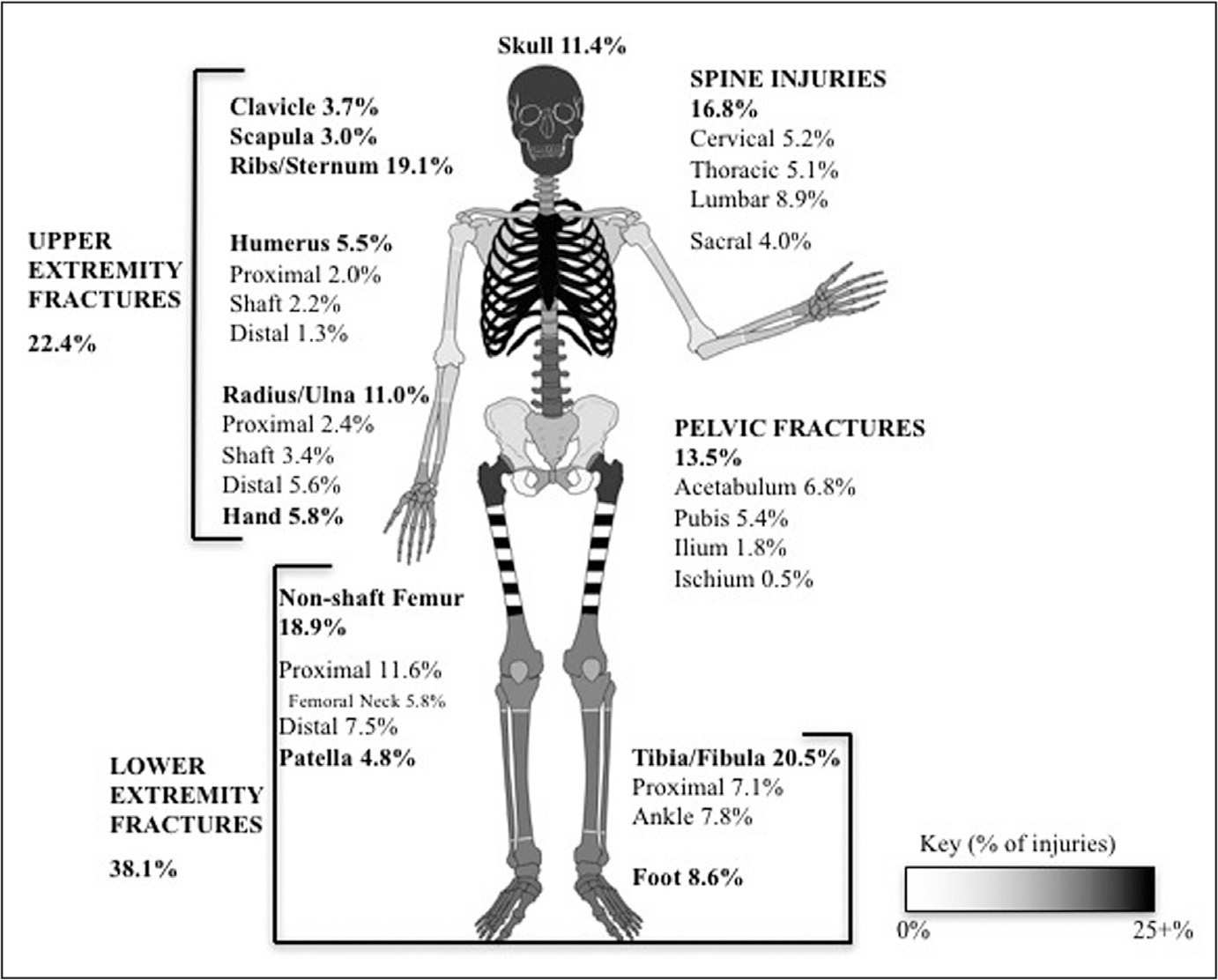 Analysis of Bony and Internal Organ Injuries Associated