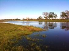 1,167+/- Acres  Spread Oaks Ranch