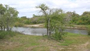 371 Acres For Sale – SOLD – Medio Creek Ranch – Berclair
