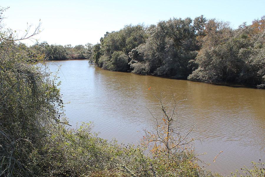248 Acres For Sale - Carancahua Creek Ranch