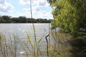 40 Acre Coleto Lake Property For Sale