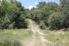 309 Acre Sparks Ranch For Sale – SOLD!