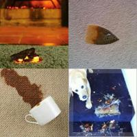 Different Kinds of Carpet Problems and How to Deal With ...