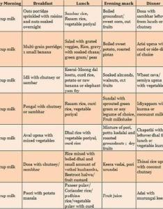South indian pure vegetarian food chart for year old also paperblog rh enperblog