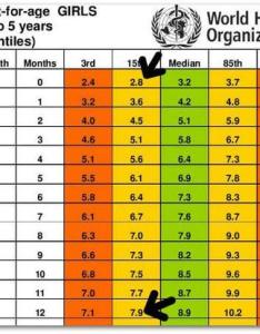 Standard height and weight chart for babies that every parent should know also rh enperblog