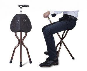 walking stick chair heavy duty eames dining best cane with seat for people paperblog