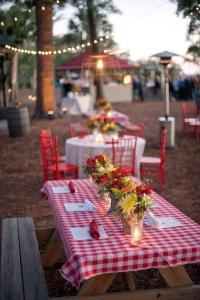 Picnic Table Decorations For Wedding Photograph | Fun Summer