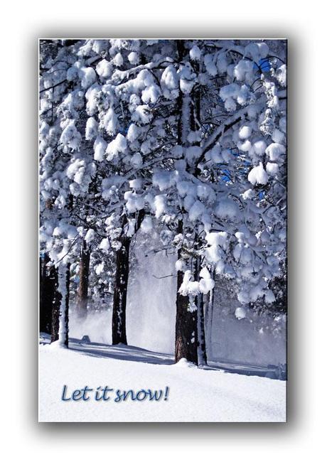 Colorado Holiday Christmas Cards Colorado Nature Paperblog