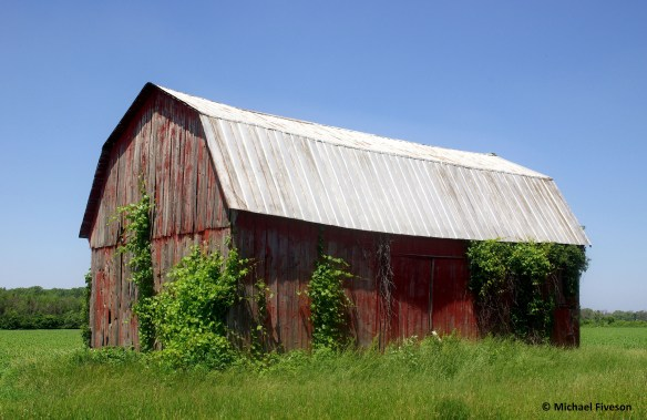 Barn Mike S Look At Life