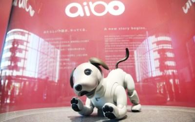 AI技術を搭載し更なる進化した「aibo」!