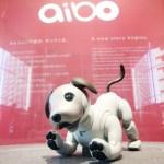 AI技術搭載!今度の「aibo」も、更なる進化…