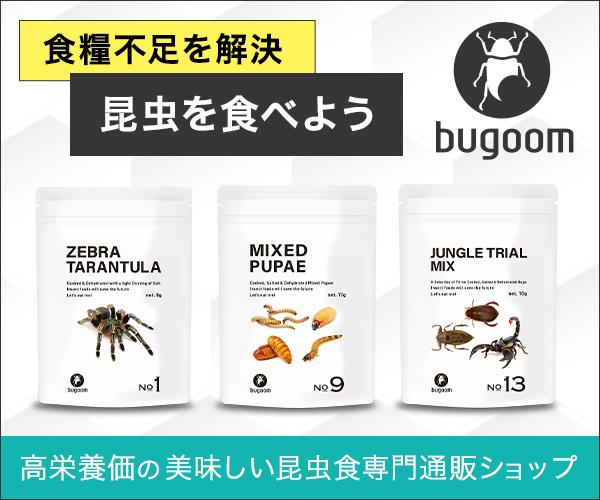 昆虫食が人類を救う! 栄養価が非常に高い食材だったんです。