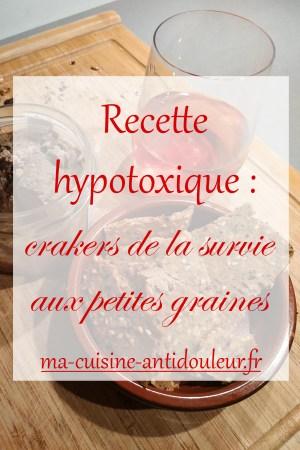 Crackers-de-la-survie-aux-petites-graines