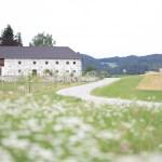 Steinbloß Bauernhof Mühlviertel