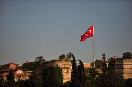 Turkish flag and birds1 Comment
