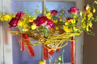 Amazing flowers2 Comments