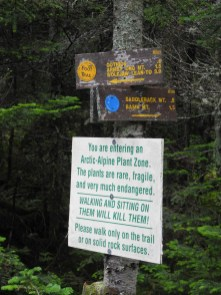 Trail distances mean nothing here.