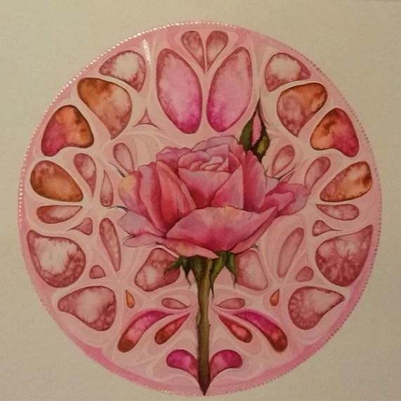 Rose Roosa 4