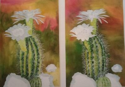 Cactus 10