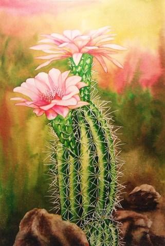 Cactus 15