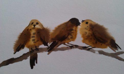 Linnud 3