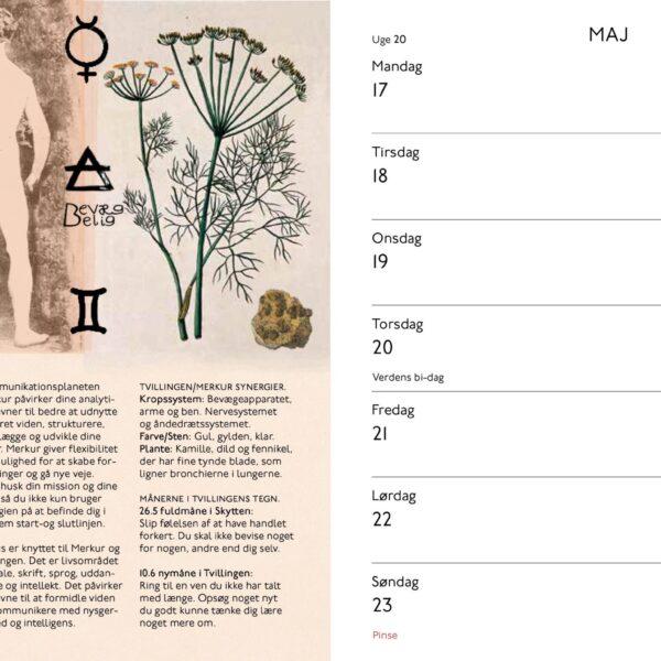 Måneurt 2021 PDF_2-6