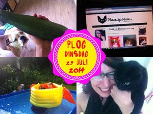 Vorig jaar was ik druk bezig met de Ploesie-site...