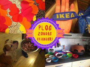 Vorig jaar ging ik naar de IKEA! OMG!