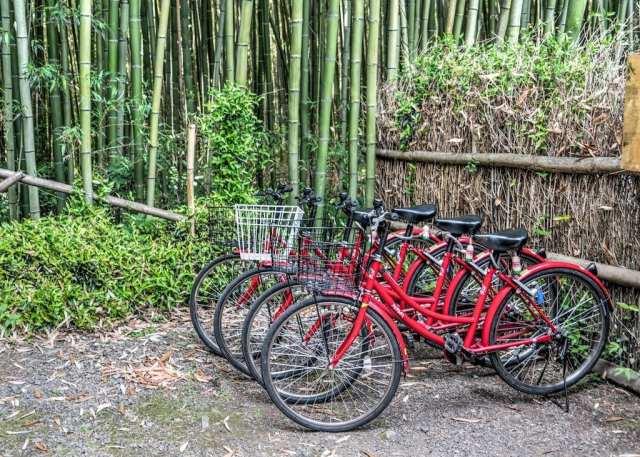 R_fietsen-in-kyoto.jpg