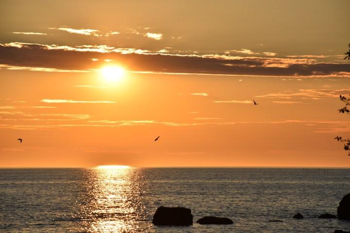 maaritse_auringonlasku_hiekkasarkat