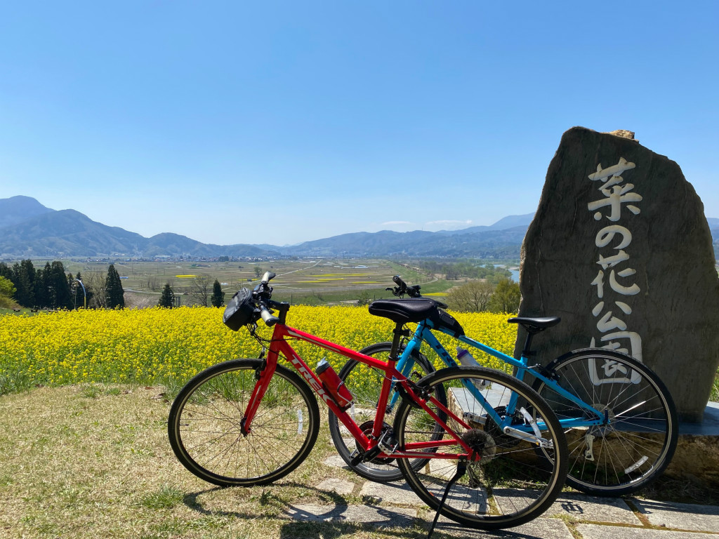 飯山菜の花サイクリング