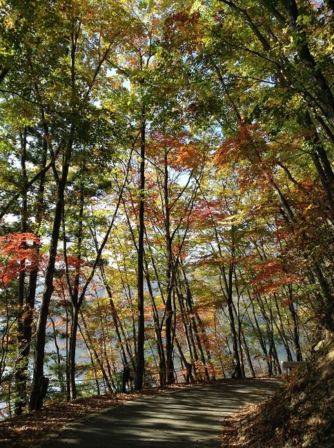 青木湖周遊道路の紅葉