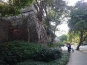 wall of china, Guangzhou branch :-)