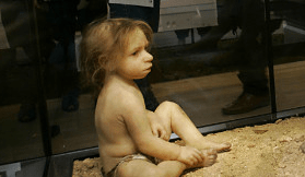http://edition.cnn.com/2013/01/24/opinion/caplan-neanderthal-baby/index.html?hpt=hp_c5