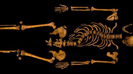 http://edition.cnn.com/2013/02/04/europe/gallery/richard-iii-bones-gallery/index.html?iid=article_sidebar