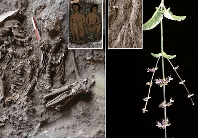 http://www.dailymail.co.uk/sciencetech/article-2353484/Scientists-discover-oldest-grave-flowers-14-000-years-ago--dead-buried-mint-sage.html