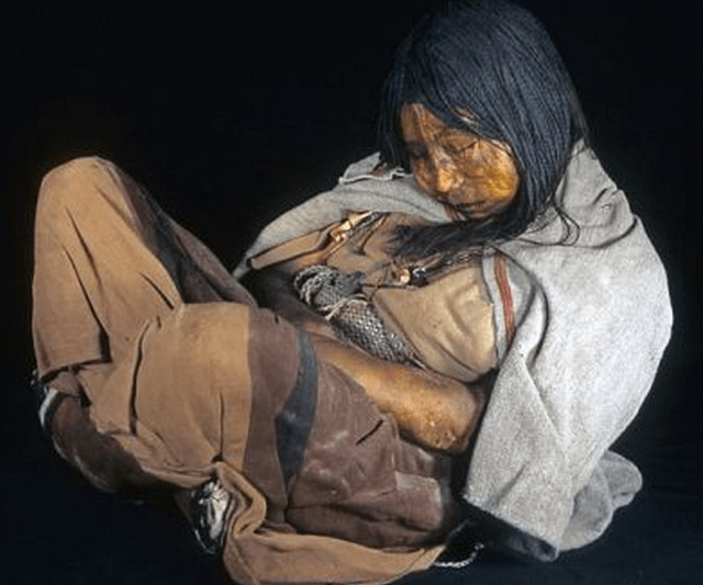 http://www.dailymail.co.uk/sciencetech/article-2380813/Drugged-beer-cocaine-left-freeze-death-500-year-old-mummies-sacrificed-Inca-children-reveal-secrets.html