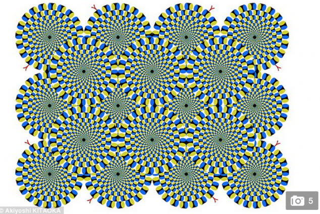 http://www.dailymail.co.uk/sciencetech/article-2940037/The-optical-illusions-trick-FISH-Mind-bending-patterns-reveal-similarities-human-aquatic-brains.html