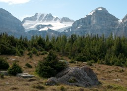 A favorite Hike -- Larch Valley up to Sentinel Pass