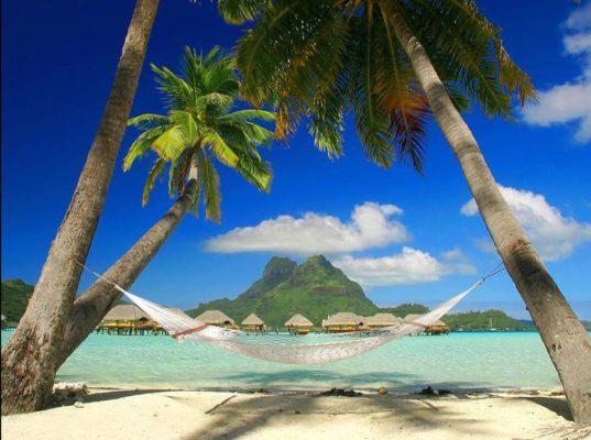 Viva la vakantie