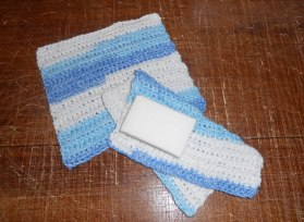 Just Bubbly Washcloths