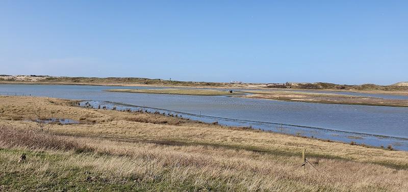 Découverte du Zwin à Knokke (mer du nord)