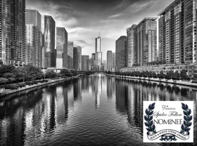 Trump Tower and Chicago River Skyline M - Mabry Campbell