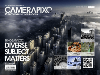Camerapixo-Diverse -Subject-Matters-Cover-Mabry-Campbell