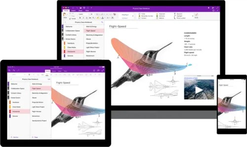 OneNote application image