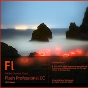 Adobe_Flash_Professional_CC_2015_icon.jpg