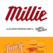 Millie_Fonts_Family_12_Fonts_icon.jpg