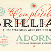 Adorn_Font_Family_20_Fonts_for_icon.jpg