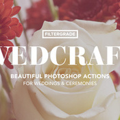 Creativemarket_Wedcraft_Wedding_Photoshop_Actions_269580_icon.jpg